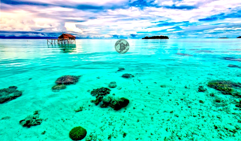 Bitcoin Trading Volume Surges in Indonesia After Country Officially Recognizes Crypto as Commodities
