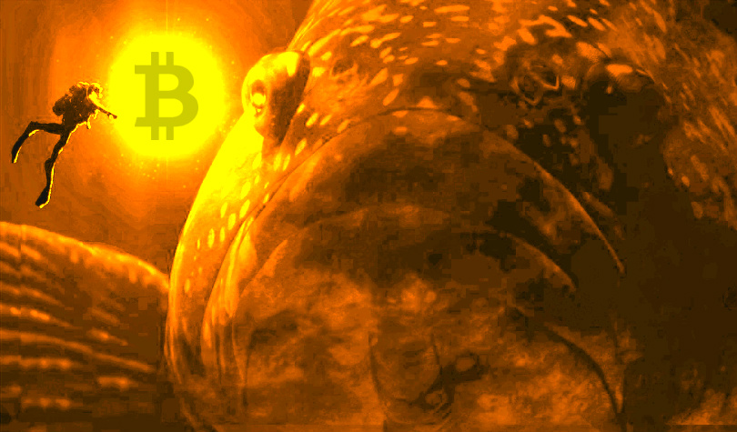 Bitcoin Whales Move $197 Million in BTC – Plus Ripple and XRP, Ethereum, Tron, Litecoin, Stellar