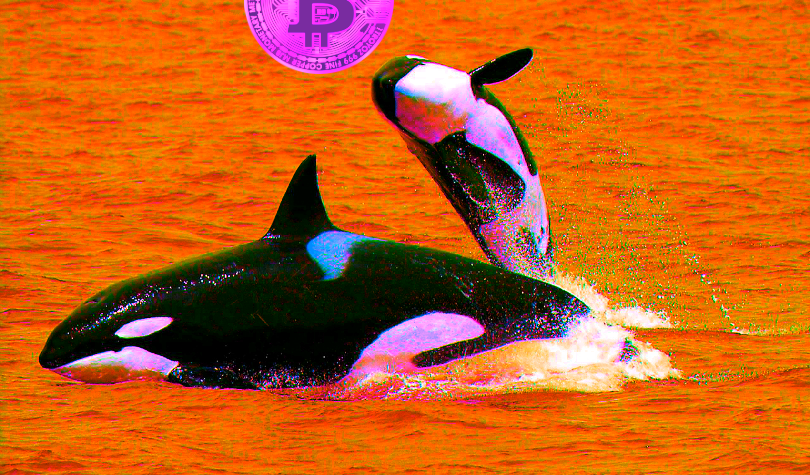 Billion-Dollar Crypto Whale Says Bitcoin Could Soon Burst to $15K – Plus Litecoin, Ethereum, Ripple and XRP, Tron