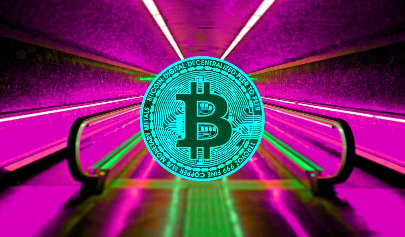 Crypto Trader Says Bitcoin Whales Triggered $12 Billion Crypto Surge – Plus Ripple and XRP, Ethereum, EOS, Cardano, Litecoin, Stellar