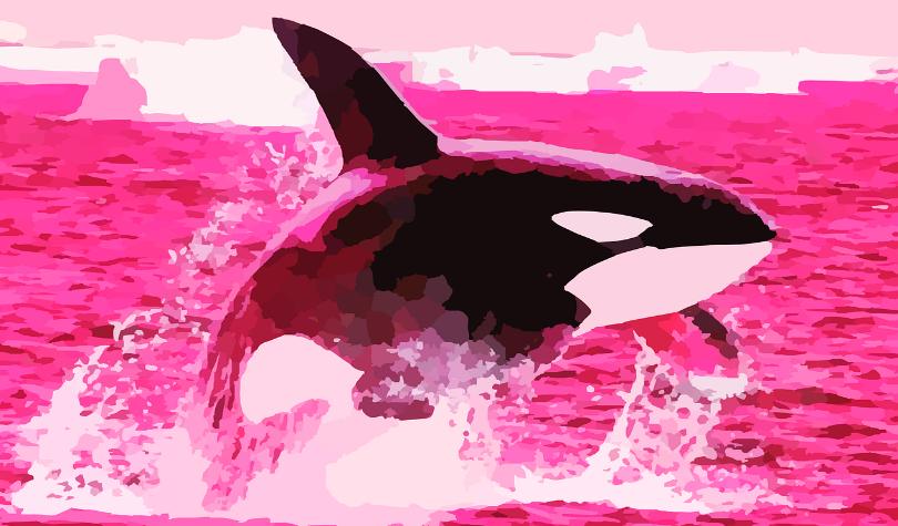 Massive Crypto Whale Moves 15,000 BTC Worth $176 Million – Plus Ethereum, Ripple and XRP, Litecoin, Stellar, Cardano