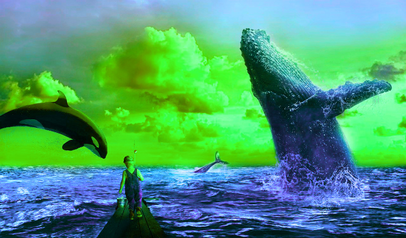 Crypto Analyst Says Bitcoin Whales Dominating Wild Weekend