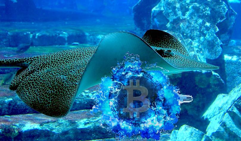 Self-Proclaimed Satoshi Says Court Ruling Against Him Could Trigger Billion-Dollar Bitcoin Dump