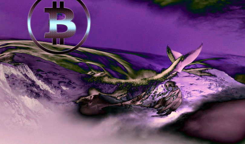 Bitcoin and XRP Whales Move $139 Million in Crypto As Market Momentum Shifts – Plus Updates on Ripple, Ethereum and Stellar