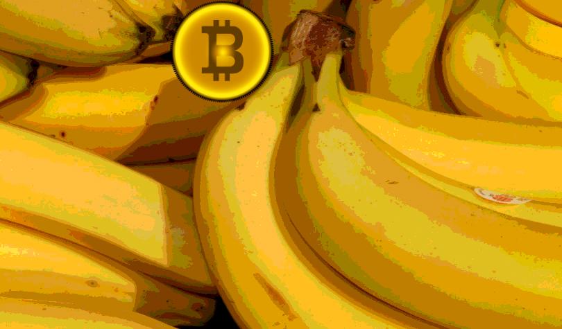 Rainn Wilson of The Office Quotes Mark Cuban: Asks for Bitcoin 'Bananas' and Crypto – BTC, ETH, LTC, BCH Accepted