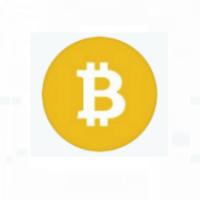 "Restoring the ""Satoshi Vision"": Bitcoin Independence Day, November 15, 2019"