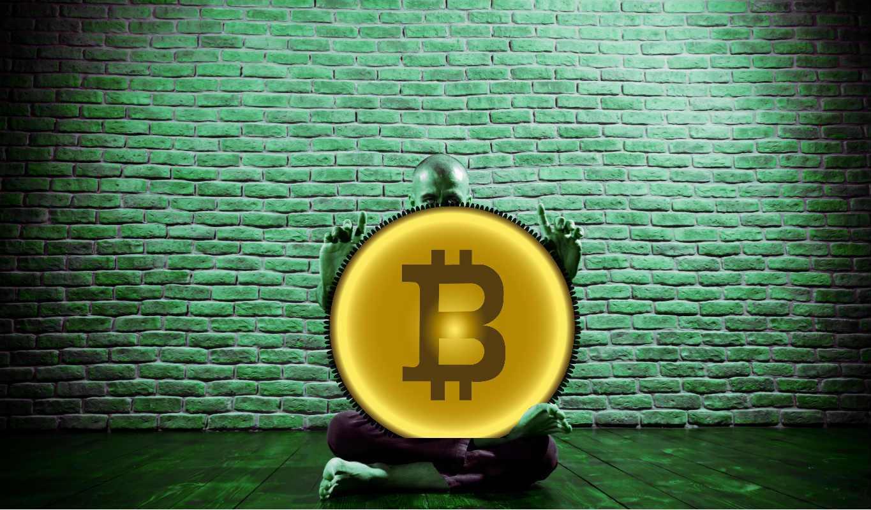 surf pentru bitcoin piața bitcoin în acest moment